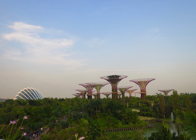 best things to do in Singapore - gardens by the bay