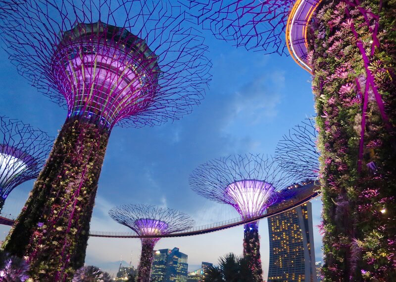 Singapore travel | Itinerary ideas and beautiful sights you'll want to visit. Are you looking for things to do in Singapore? Not sure which places to visit? Click on this post for Singapore photography and tips on sights you'll want to visit during your trip