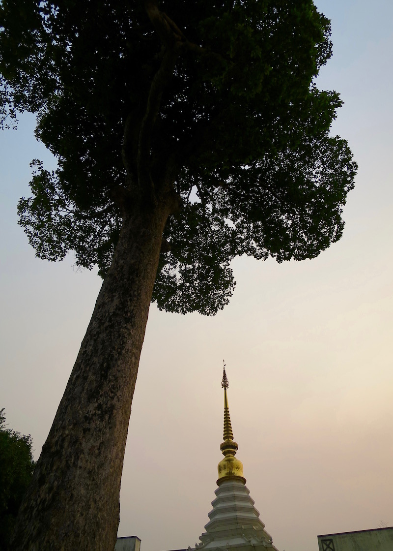 Thailand Travel - Chiang Mai Temples - 3 - Wat Chedi Luang