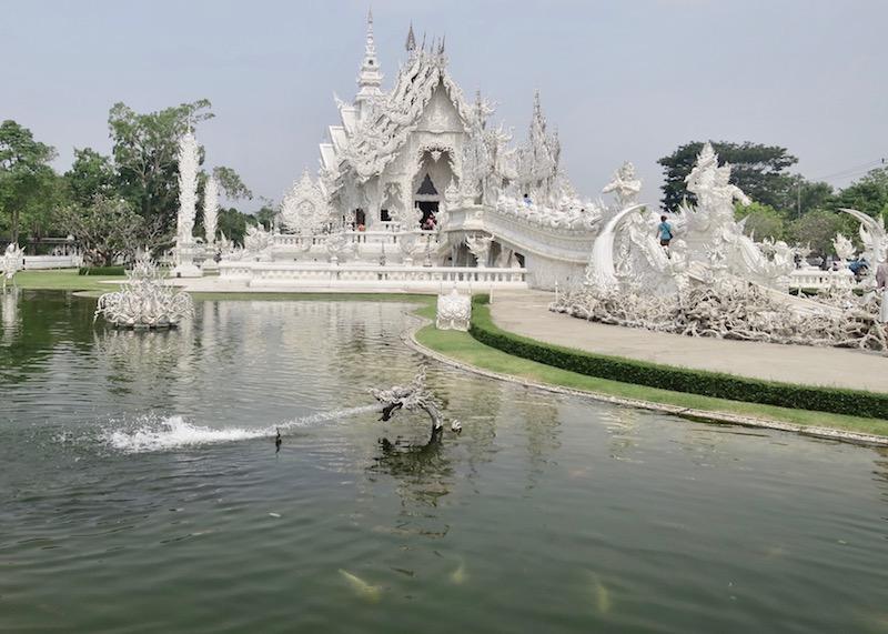 Wat Rong Khun White Temple In Chiang Rai – albino Japanese koi
