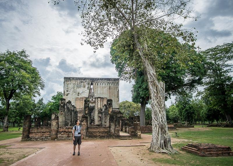Trees outside of Wat Si Chuan in Sukhothai Thailand