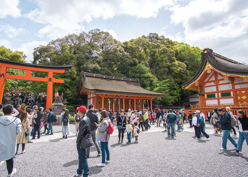 nomadic life new zealand japan - Fushimi Inari Shrine kyoto japan