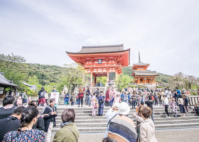 nomadic life new zealand japan - japan tourist crowds fushimi inari shrine