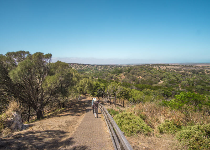 Great ocean road stops - Tower Hill Wildlife Reserve