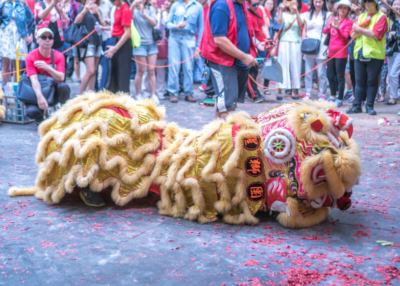 Melbourne travel blog - chinese new year dragon dance