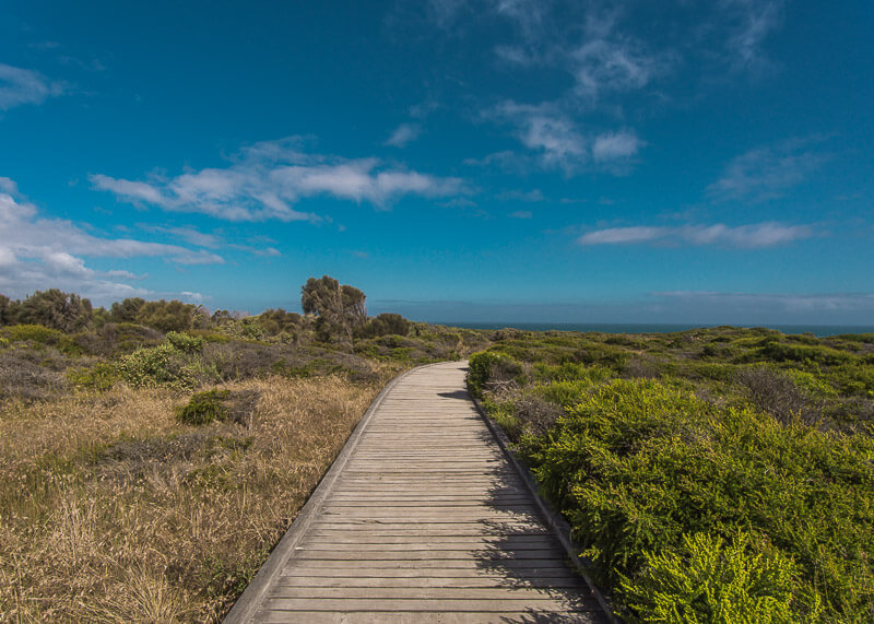 Great Ocean Road Tour From Melbourne - path through the bushes
