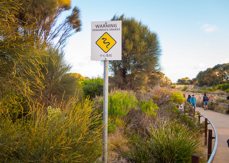 Great Ocean Road Tour From Melbourne - snake signs