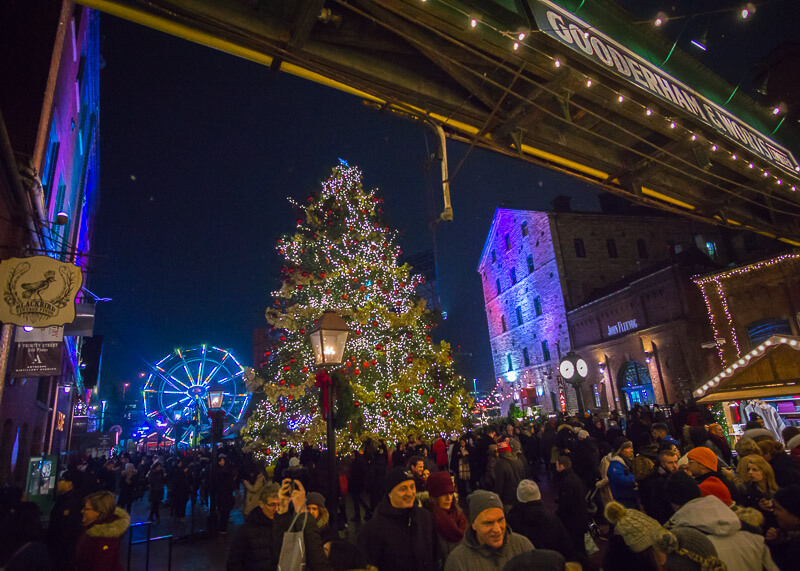 Toronto distillery district Christmas market - tree