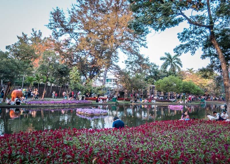 chiang mai flower festival - park