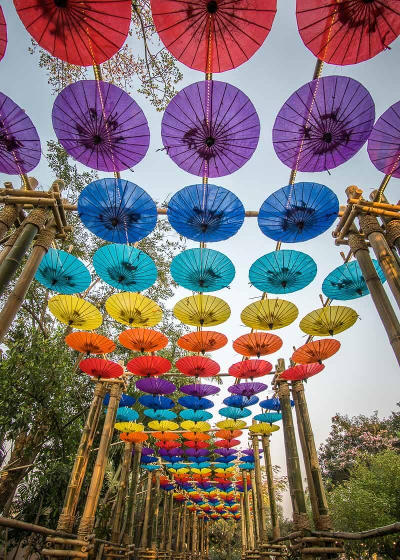 chiang mai flower festival - colourful umbrellas