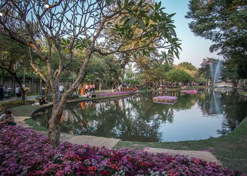 chiang mai flower festival - pond